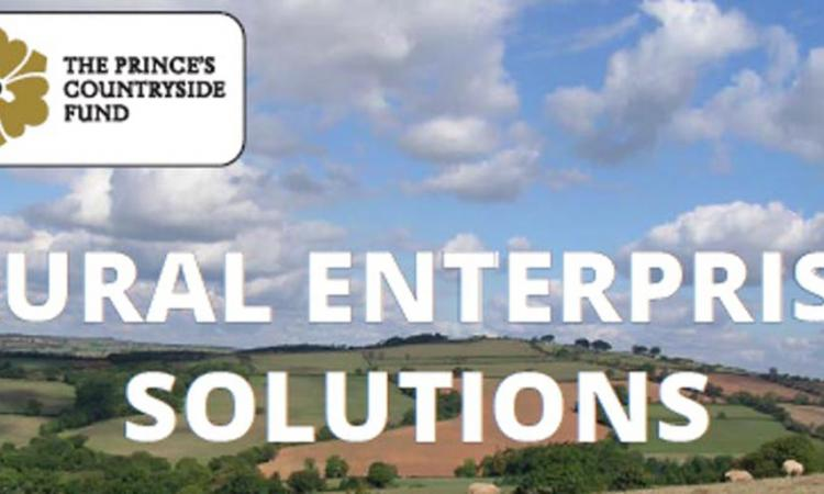 Rural Enterprise Solutions